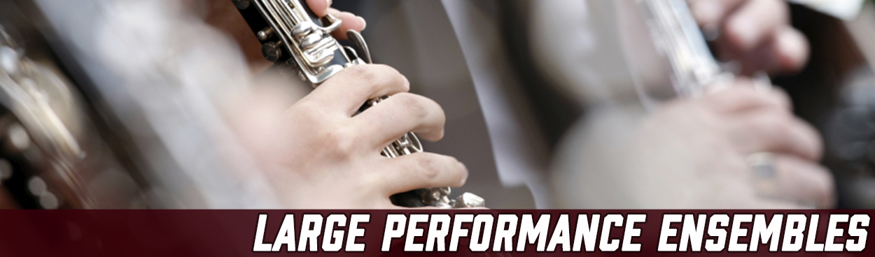 Large Performance Ensemble Auditions